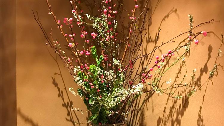 今週のお花が届きました!(2月20日)